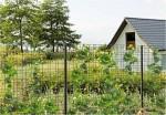 jednoduchý živí plot